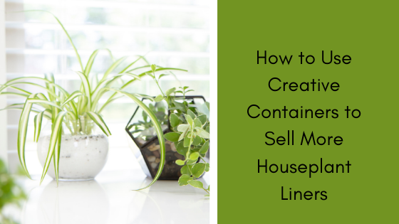 Image for How to Use Creative Containers to Sell More Houseplant Liners