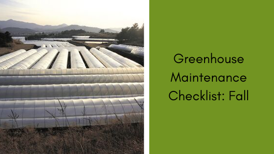 Image for Greenhouse Maintenance Checklist: Fall
