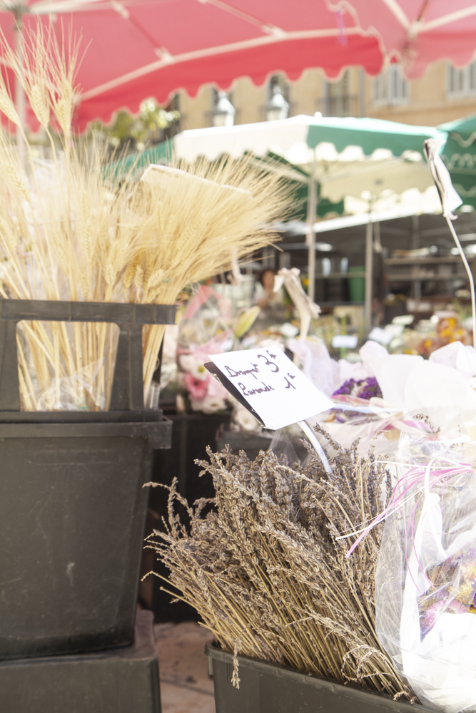 Lavender Flower Market