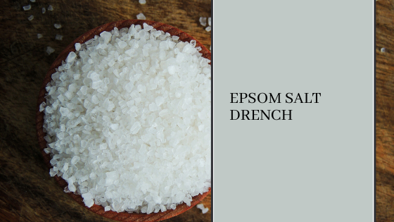 Image for Epsom Salt Drench: Everything You Need to Know