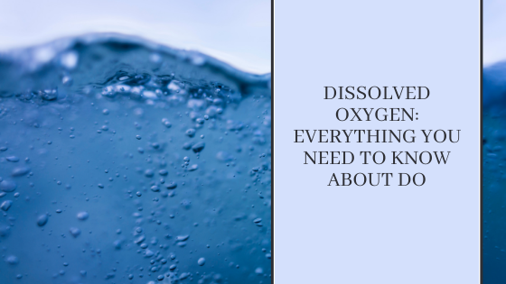 Image for Dissolved Oxygen: Everything You Need to Know About DO
